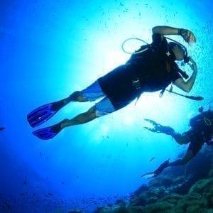 Koh Tao Dive Tour