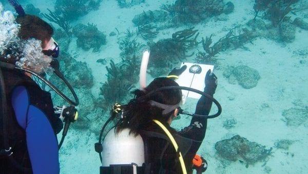 Underwater Navigator