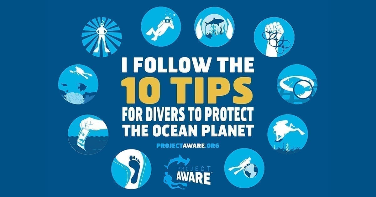 10 Tips for Divers to Protect the Ocean Planet